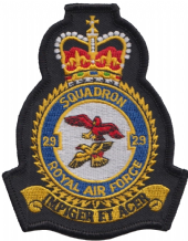 No. 29 (R) Squadron Royal Air Force RAF Crest MOD Embroidered Patch